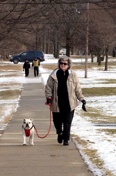 See Dog Walk See Dog Play-020414