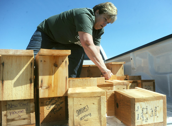 Globe/Roger Nomer<br /> Becky Wylie unloads a batch of birdhouses at the Backyard Recovery event in Cunningham Park on Saturday.  The event gave away trees and birdhouses to replace those lost in the tornado.