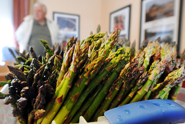 Globe/T. Rob Brown<br /> Asparagus, grown by Tim Green (background), of Galena, Kan., with Shoal Creek Garden & Greenhouse, for sale at the Webb City Farmers Market Friday morning, April 20, 2012.