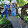 Globe/T. Rob Brown<br /> Bill Scott, left, and his son Tom Duane Scott stand next to an antique walking plow on the family's property Wednesday afternoon, April 25, 2012, near Parsons, Kan. The plow, which was pulled by two horses, was used on the Scott family farm from the late 1800s to the early 1900s.