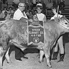 "THE GOSHEN NEWS | JULY 30, 1969<br /> Elkhart County's 1969 fair queen, Lana Mattern, and Raymond Horein, representing Leatherman's Super Dollar in Wakarusa, present the reserve champion banner to Wendy Myers and ""Bagheera."""