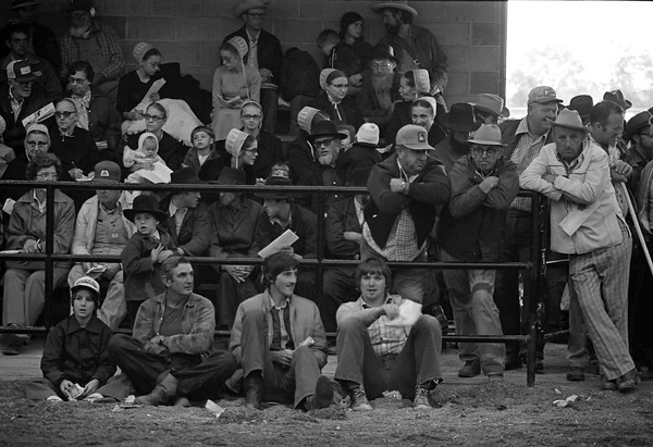 THE GOSHEN NEWS PHOTO  THE GOSHEN NEWS | OCT. 5, 1979<br /> Buyers, sellers and people just interested in good horse packed the beef-dairy arena at the Elkhart County 4-H Fairgrounds Thursday for a colt auction. This is the sixth year for the annual sale which is organized by horse breeders from this area. The sale specializes in colts, although some mares were also on the block. Even if you didn't come to buy or sell, the sale was a good place to see and learn about good horses.