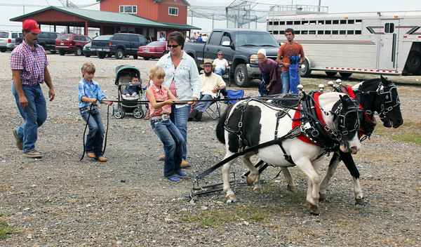 JULIE CROTHERS | THE GOSHEN NEWS<br /> Twin sisters Taylor, at left, and Tori Scofield, both 8, walk with their ponies after their first round of pony pulls Saturday at the Millersburg Farmer's Days. Their parents Lisa and Mark Scofield, of Angola, helped the girls.