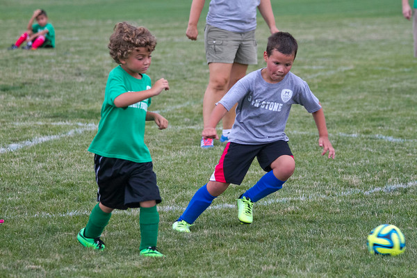 SAM HOUSEHOLDER | THE GOSHEN NEWS<br /> Jackson Greenlee, 6, left and Dominic Freitas, 7, chase after a ball during a game at the Nappanee Soccer Complex. The complex opened this year.