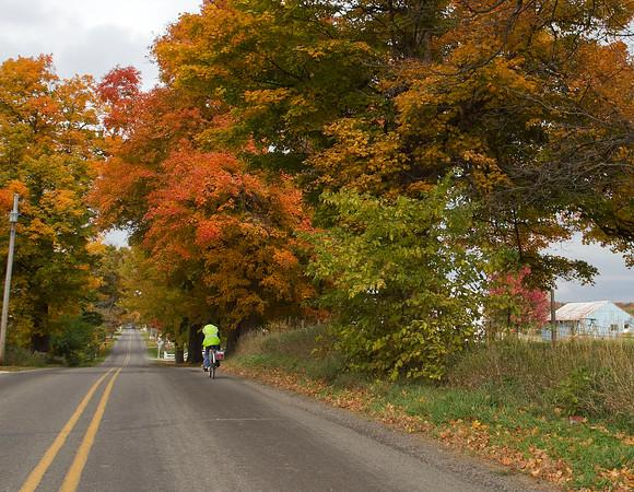 SAM HOUSEHOLDER | THE GOSHEN NEWS<br /> An Amish biker rides down C.R. 35 east of Goshen Thursday.