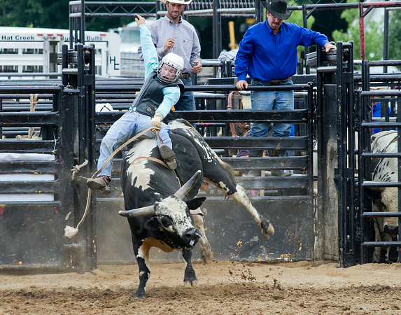 SAM HOUSEHOLDER | THE GOSHEN NEWS<br /> Chad Stutzman, of Nappanee, rides a bull Friday during the rodeo at the Elkhart County 4-H Fair.