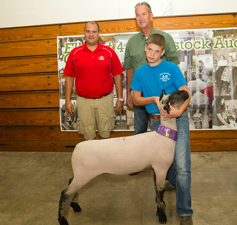 SAM HOUSEHOLDER | THE GOSHEN NEWS<br /> Grand champion single-market lamb belonged to Austin Bernicky, of Claypool. Buyers include, left, Brian Lambright, Lambright Club Lambs and Shipshewana Auction and Tim Graber, of the Graber Family.