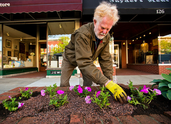 JAY YOUNG | THE GOSHEN NEWS<br /> Volunteer Dave Pottinger, of Goshen, spreads mulch after planting petunias in a brick planter in the 100 block of Main Street Wednesday morning.