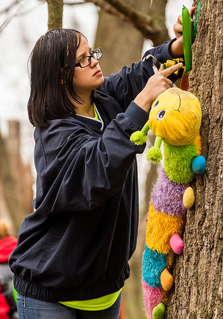 JAY YOUNG | THE GOSHEN NEWS<br /> Jessica Witte, a senior at Merit Learning Center, attaches a plastic flower to a tree Tuesday morning at LoveWay in Middlebury. Students from the school, who were working on their service learning project, decorated the sensory riding trail with colorful art.