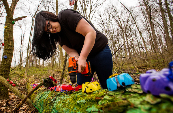 JAY YOUNG | THE GOSHEN NEWS<br /> Merit Learning Center junior Cassie Penney uses a drill to help fasten plastic ladybugs to a fallen tree Tuesday morning at LoveWay in Middlebury. Students from the school, who were working on their service learning project, decorated the sensory riding trail with colorful art.
