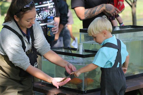 Roger Schneider   The Goshen News<br /> Jayden Lee Mast, 3, of Middlebury, touches a chestnut lamprey that Madelyn Boyer, an intern biologist with the city of Elkhart, is holding. The lamprey was captured in the Little Elkhart River along with 14 other species of fish as part of an educational program at the Middlebury Riverfest.