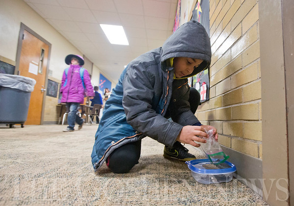 JAY YOUNG | THE GOSHEN NEWS<br /> Chamberlain Elementary second grade student Jayce Smith kneels down to drop pennies he collected into a container outside his classroom on Tuesday morning. Students at Chamberlain are collecting money to help Parkside Elementary raise money for a new playground. Last week alone, the students collected about $800.