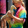 Roger Schneider | The Goshen News<br /> A young duck flaps its undeveloped wings while Madison Glenn, 10, of Topeka, holds onto it. Glenn was at the LaGrange County 4-H Fair Saturday and had just given the duck a swim in a pool.