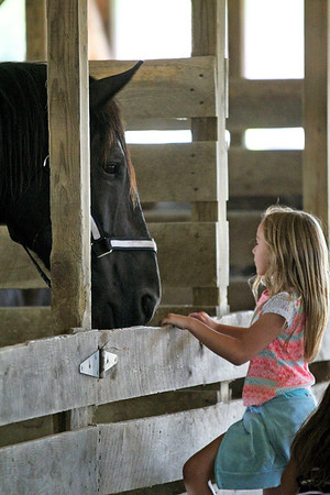 Roger Schneider | The Goshen News<br /> Memphis Bontrager, 8, Shipshewana, talks to a large plow horse in a stable at the LaGrange County 4-H Fair on the first day of the fair Saturday.