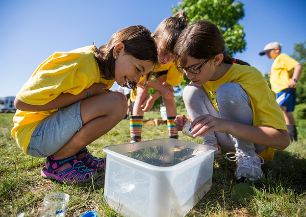 JAY YOUNG | THE GOSHEN NEWS<br /> From left, Maria Ward, 10, Taylor Martin, 9, and Karis Bontrager, 10, gather around a container to watch a large tadpole that was captured.