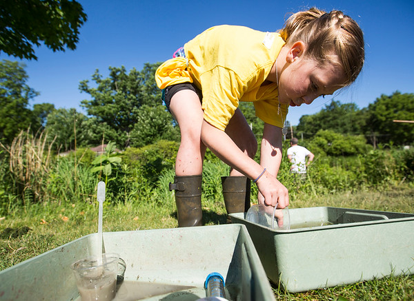 JAY YOUNG | THE GOSHEN NEWS<br /> Eight-year-old Anna Smucker, of Goshen, pours out a container of water, looking for any live critters.