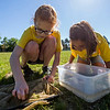 JAY YOUNG | THE GOSHEN NEWS<br /> Ten-year-old Kaylee Woelk, of Goshen, picks a small insect out of her net while Maria Ward, 10, of Elkhart, watches other caught bugs swim around.