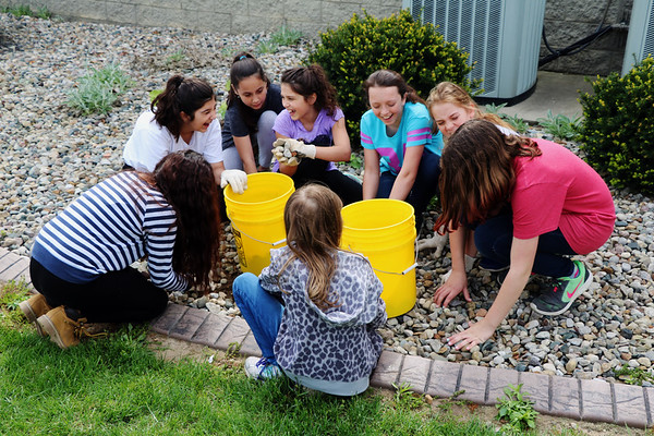 JOHN KLINE | THE GOSHEN NEWS<br /> A group of fifth graders from Parkside Elementary School laugh as they pick up rocks at Grace Community Church on the city's west side during the second annual Goshen Community Schools Student Service Day Tuesday morning.