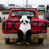 BEN MIKESELL | THE GOSHEN NEWS<br /> A stuffed panda rests on the back of a pickup truck in the pit before Saturday's Night of Demolition at New Paris Speedway.