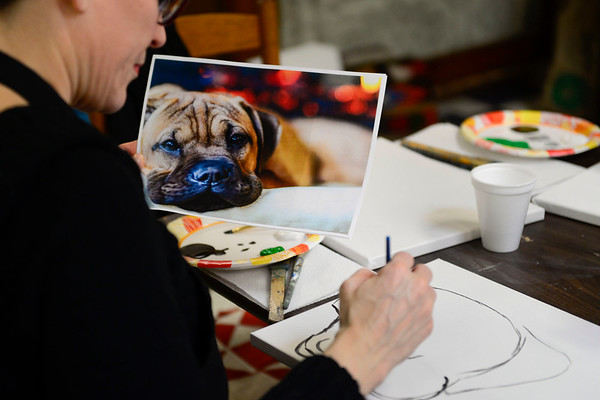BEN MIKESELL | THE GOSHEN NEWS<br /> Linda Gerber of Goshen concentrates on a picture of her shar pei boxer mix Charlie while painting his portrait Thursday at Home Again Consignment's Pet Portrait Day.