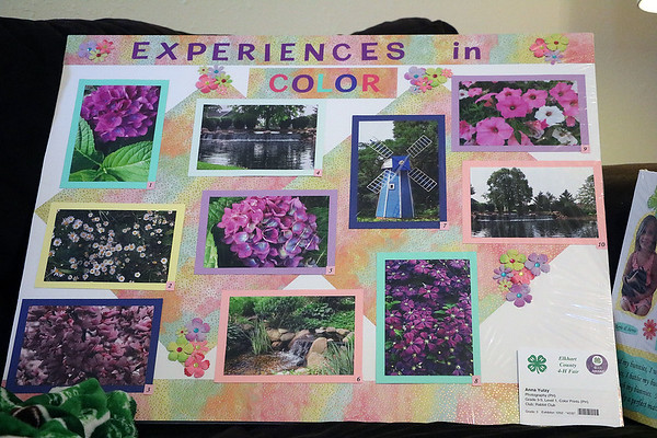 TERRAH HARMON | THE GOSHEN NEWS<br /> Aside from showing rabbits, Anna also participates in photography projects at the Elkhart County 4-H Fair. Anna said her younger sister helped make the poster since she was in the hospital.