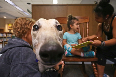 LEANDRA BEABOUT | THE GOSHEN NEWS Visiting greyhound Murry looks on as Nova Floyd, 4, and her mother Alejandra Floyd, both of Goshen, read together at the Goshen Public Library. The Greyt Readers program occurs twice a month at the library.
