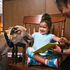 LEANDRA BEABOUT | THE GOSHEN NEWS<br /> Four-year-old Nova Floyd, of Goshen, pets visiting greyhound Murry as her mother, Alejandra Floyd helps her read a book. Heather Peyatt, of Cromwell, holds Murry. Peyatt is a volunteer for American Greyhound's Greyt Readers program at Goshen Public Library, which occurs twice a month.