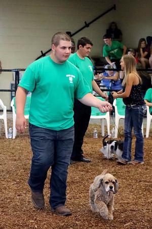 LIZ RIETH | THE GOSHEN NEWS Josiah Claar, 16, a champion from rabbit club, shows a dog at the Round Robin Showmanship Contest Thursday.