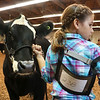 LIZ RIETH | THE GOSHEN NEWS Taylor Laudeman, 9 from Bourbon, shows her heifer at the 1st Annual Bill George Memorial Open Beef Show Saturday.