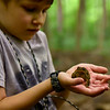 BEN MIKESELL | THE GOSHEN NEWS<br /> Addison Berkey, 6, Elkhart, holds a toad that was found while building shelters during Nature Explorer Day Camp Tuesday morning at Ox Bow Park.