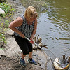 AIMEE AMBROSE | THE GOSHEN NEWS <br /> <br /> Jennifer Labeau, Elkhart, nets a 36 inch carp her son Kyle Ostrom, Topeka, caught from the St. Joseph River at Island Park as part of the annual  Elkhart Family Fish Fest on Saturday.