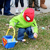 JOHN KLINE | THE GOSHEN NEWS<br /> Kyden Wedge, 2, of Middlebury, channels his inner superhero as he quickly snatches candy-filled Easter eggs during the annual Middlebury Township Fire Department Easter Egg Hunt at Memorial Park in downtown Middlebury Saturday morning.