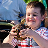BEN MIKESELL | THE GOSHEN NEWS<br /> Elijah Steele, 4, Goshen, holds onto a eastern box turtle during First Friday on the lawn of the Elkhart County Courthouse Friday in Goshen. Elkhart County Parks Department was on site letting people touch creatures including turtles and fish.