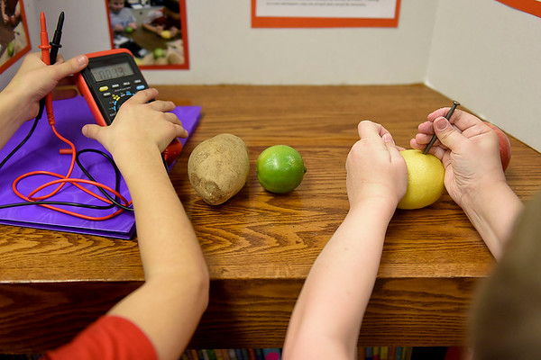 "BEN MIKESELL | THE GOSHEN NEWS<br /> Third-graders Eli McKeown, left, and Tyler Golden, right, demonstrate their experiment titled, ""Electric Fruits and Veggies,"" Thursday morning at Ox Bow Elementary School."