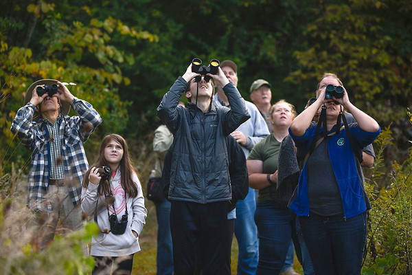 BEN MIKESELL | THE GOSHEN NEWS<br /> The group of bird watchers use binoculars and cameras to keep an eye on a flock of birds flying overhead Wednesday morning at the Benton Dam River Preserve.