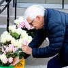 "SHEILA SELMAN | THE GOSHEN NEWS<br /> John Hertzler, Goshen, takes a pink rose from a bucket of roses set outside of City Hall by Mayor Jeremy Stutsman Friday morning. The dozens of roses were free to anyone who wanted one, and were personally purchased by Stutsman and his family as a thank you to the residents of Goshen. Hertzler said the rose was for his wife Carolyn. ""What a great idea,"" Hertzler said. "" What a great family"""