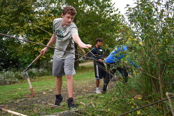 BEN MIKESELL | THE GOSHEN NEWS<br /> Concord High School freshman Conner Merrill throws twigs onto a pile during Concord's community service day Wednesday at the Heartland Wildlife Rehabilitation Center in Goshen. Freshmen students at Concord spent the morning at various locations around Goshen, Elkhart and Middlebury.