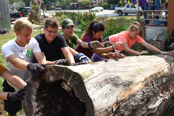 BEN MIKESELL   THE GOSHEN NEWS<br /> Goshen College students help move a tree trunk out of the yard at Goshen Youth Arts Wednesday during Goshen College's Community Engagement Day.