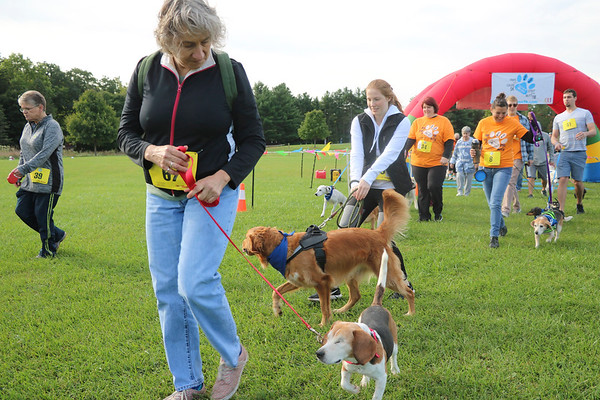 AIMEE AMBROSE | THE GOSHEN NEWS Walkers, both human and canine, embark on the Strut Your Mutt 1-mile run/walk course at Ox Bow County Park Saturday. That group departed behind another group participating in the Paws for a Cause 5K walk. Both courses are part of a fundraising event to benefit the Humane Society of Elkhart County.