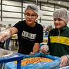 BEN MIKESELL | THE GOSHEN NEWS<br /> Lakeland Middle School seventh-grade students Kevin Carmona, left, and Blake Alleshouse, right, pour mixed vegetables and soy into a funnel while making meals for Feed My Starving Children Monday afternoon at the Michiana Event Center in Shipshewana. Half of the student body helped make meals Monday, and the rest will be helping Tuesday.