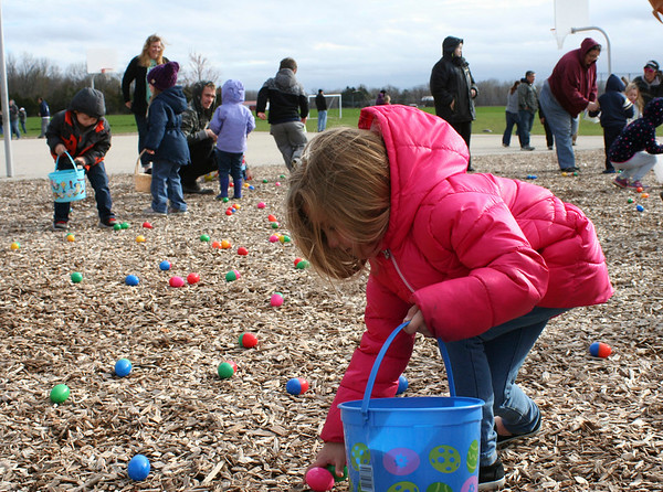 SHEILA SELMAN | THE GOSHEN NEWS<br /> A girl picks up eggs during the New Paris Lions Easter egg hunt at New Paris Elementary School Saturday morning.
