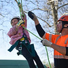 BEN MIKESELL | THE GOSHEN NEWS<br /> Rosie Shisler, 7, Goshen, climbs a tree with the help of Micah Smith, of Higher Ground Tree Care, during the Arbor Day Celebration Friday evening at Shanklin Park. The event kicked off with a musical performance from Prairie View Elementary second-graders and Chamberlain third-graders.