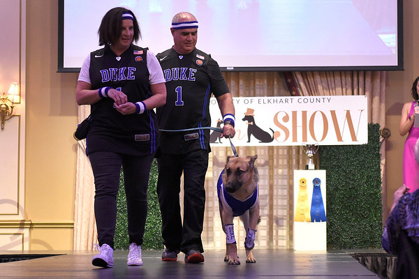 BEN MIKESELL | THE GOSHEN NEWS<br /> Frank and Tonja Lucchese walk their German shepherd, Duke, down the runway during the Humane Society of Elkhart County's Best in Show fundraiser Thursday night at the Lerner Theatre.