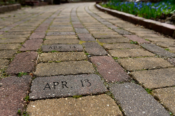 BEN MIKESELL | THE GOSHEN NEWS<br /> Dated bricks wind around the calendar gardens at DeFries Gardens in New Paris.
