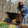 BEN MIKESELL | THE GOSHEN NEWS<br /> Elkhart County Parks gardener Pam Peterson pours mulch onto a path Thursday afternoon at DeFries Gardens in New Paris.