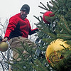 Roger Schneider | CNHI News Indiana<br /> Cory Owens reaches for a Christmas ornament on Black Friday as he decorates a Christmas tree along Zionsville's Main Street in preparation for the annual Christmas parade Nov. 30. The parade was canceled due to the cold, rainy weather.  A local retailer says weather plays a role in how many shoppers she has each holiday season.
