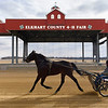 BEN MIKESELL | THE GOSHEN NEWS<br /> Sanford Ropp, of Goshen, makes laps around the track while training with his horse Thursday morning at the Elkhart County 4-H Fairgrounds. Ropp, a 22-year harness racing veteran, has spent the winter getting ready for racing season to begin March 29 at Hoosier Park in Anderson.
