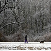 BEN MIKESELL | THE GOSHEN NEWS<br /> Ice and snow cover tree branches as Ann Cushing, Goshen, walks with her dog Glynnis Tuesday morning on the Mill Race Trail.