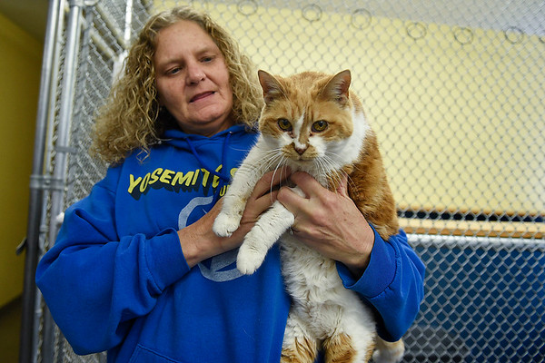 BEN MIKESELL | THE GOSHEN NEWS<br /> Co-founder Angie Wright holds one of the oldest residents, 16-year-old Daphene, during adoption hours Thursday at New Hope Animal Rescue. Daphene has been with New Hope since she was about one-year-old.