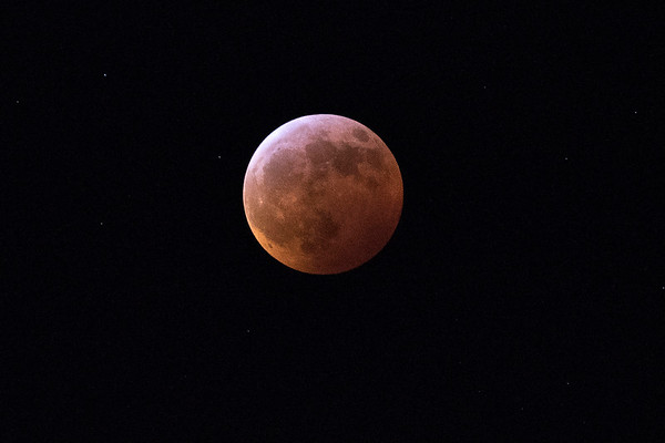 BEN MIKESELL | THE GOSHEN NEWS The super blood wolf moon, as seen Sunday night from Goshen.